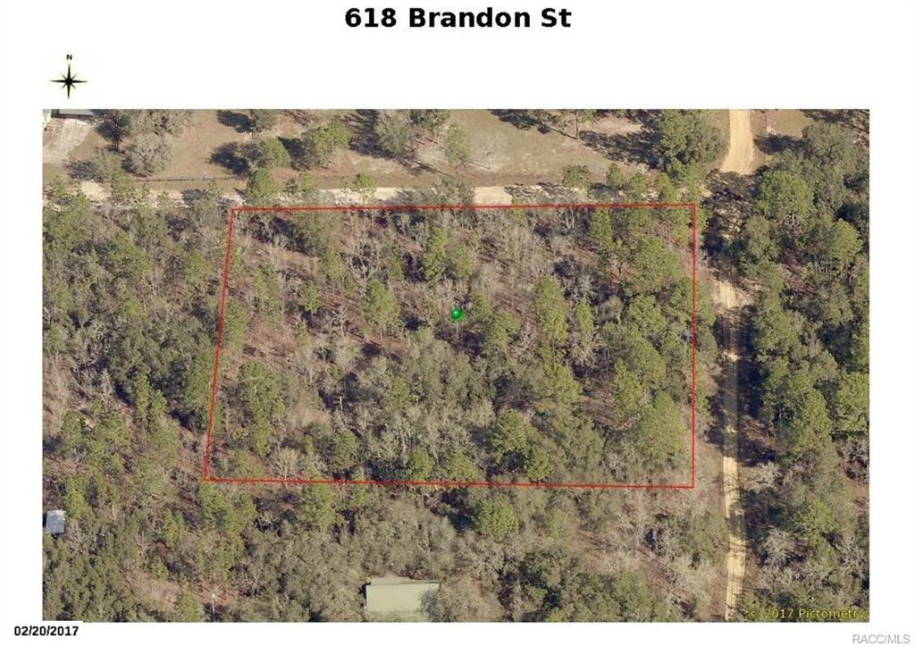 home for sale at 618 E Brandon Street, Hernando, Florida 34442 in Crystal Hill Mini Farms